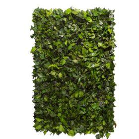 Linfa decor Parete vegetale Edera Arborea