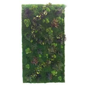 Linfa decor Parete vegetale Bosque