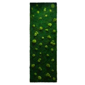 Linfa decor Parete vegetale muschio palla Nature